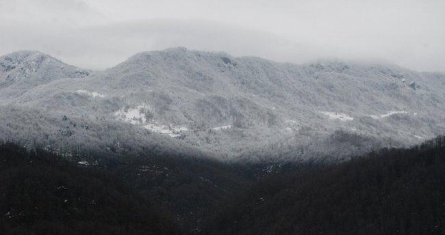 Milli Park'ta kar güzelliği